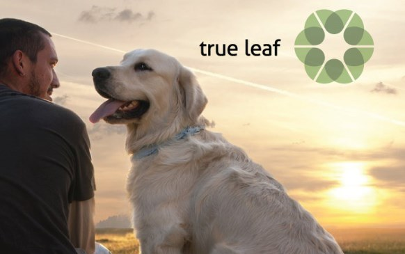 True Leaf Medicine to enter the pet food market ...